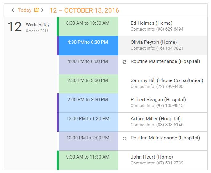 DevExpress ASP.NET Scheduler - Agenda View