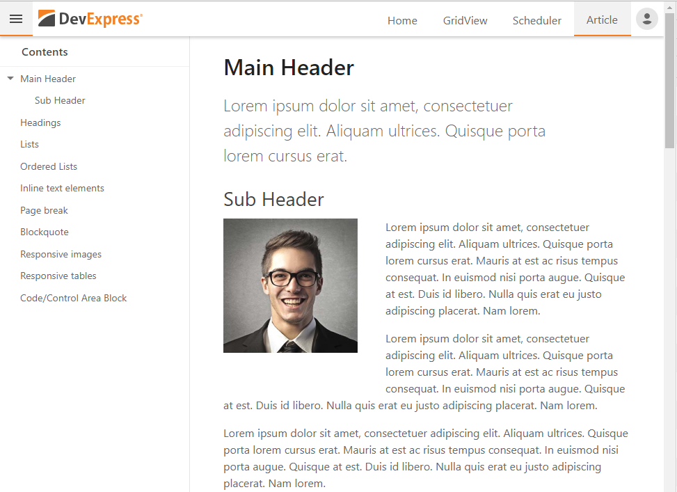 DevExpress ASP.NET Responsive Project Template
