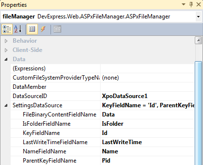 ASP.NET FileManager - Settings DataSource