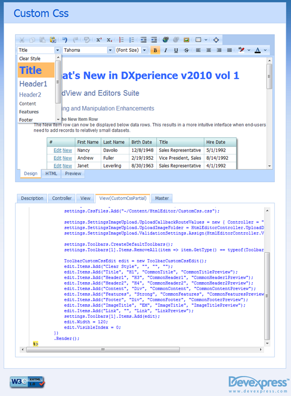 DevExpress ASP.NET MVC HTML Editor - Custom CSS