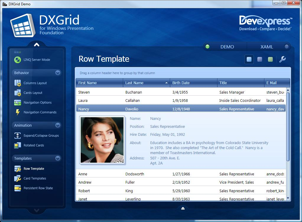 Smooth silky sleek sweet meet dxgrid for wpf ctodx for Wpf templates free download