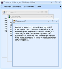 DocumentManager Native Mdi view