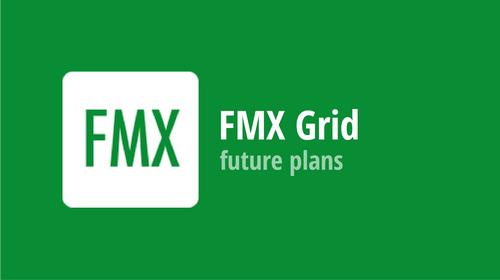 FMX Grid: future plans