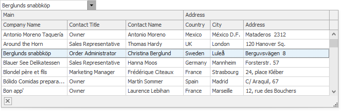 WinForms Banded GridView Lookup Control