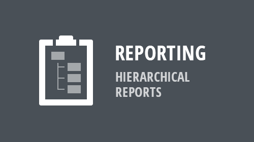Reporting - Hierarchical Reports (v19.1)