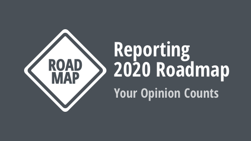 Reporting 2020 Roadmap - Your Opinion Counts