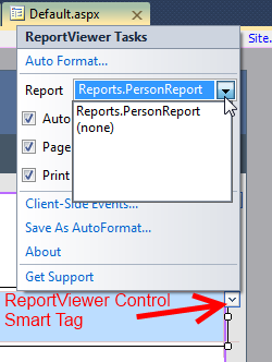 ReportViewer Smart Tag