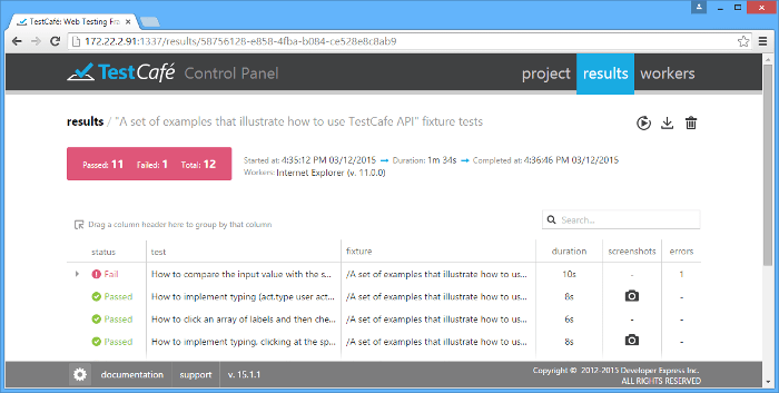 Automated Web Testing - Test Result Grid View
