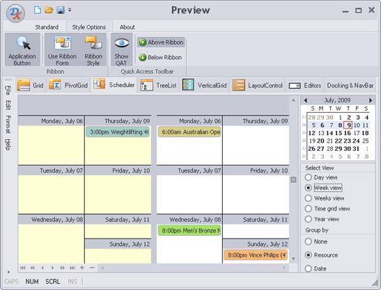 VCL Skin-Theme Express Scheduler
