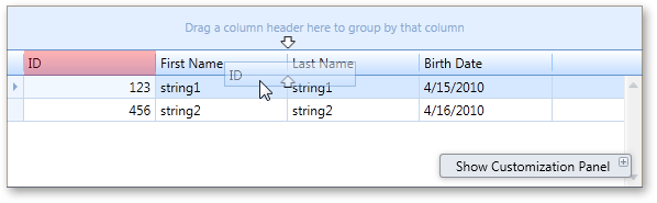 WPF Data Grid Column Customization Design Time Experience