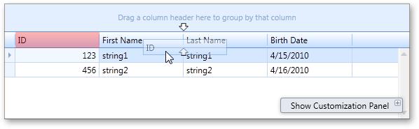 WPF Data Grid Column Customization Design Time Experience