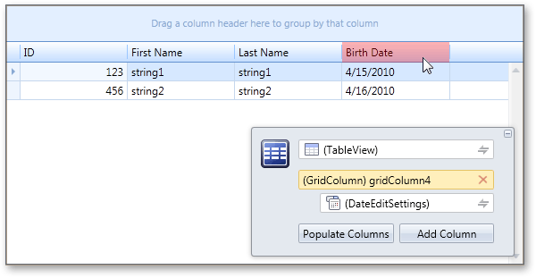 WPF Data Grid Design Time Experience
