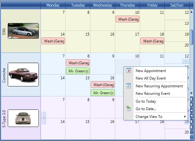 WPF Month View - Scheduler Control