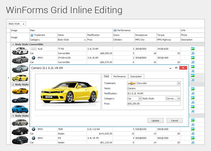 WinForms Data Grid Inline Editing Popup