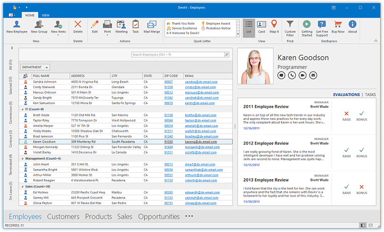 WinForms Data Grid Outlook 365 Compact View