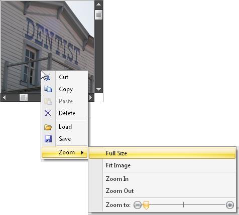 WinForms Picture Image Edit Zoom