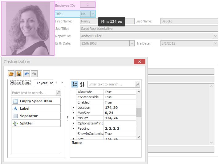 WinForms Form Layout Customization