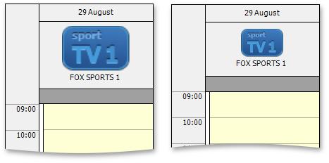 WinForms Scheduler Image Size