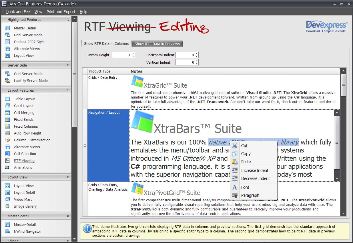 XtraGrid Rich Text Editing Capabilities