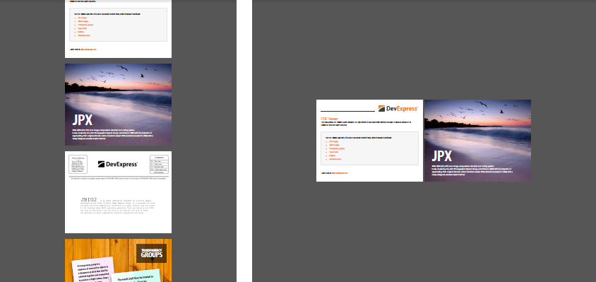 PDF Viewer - Page Thumnail Display Styles