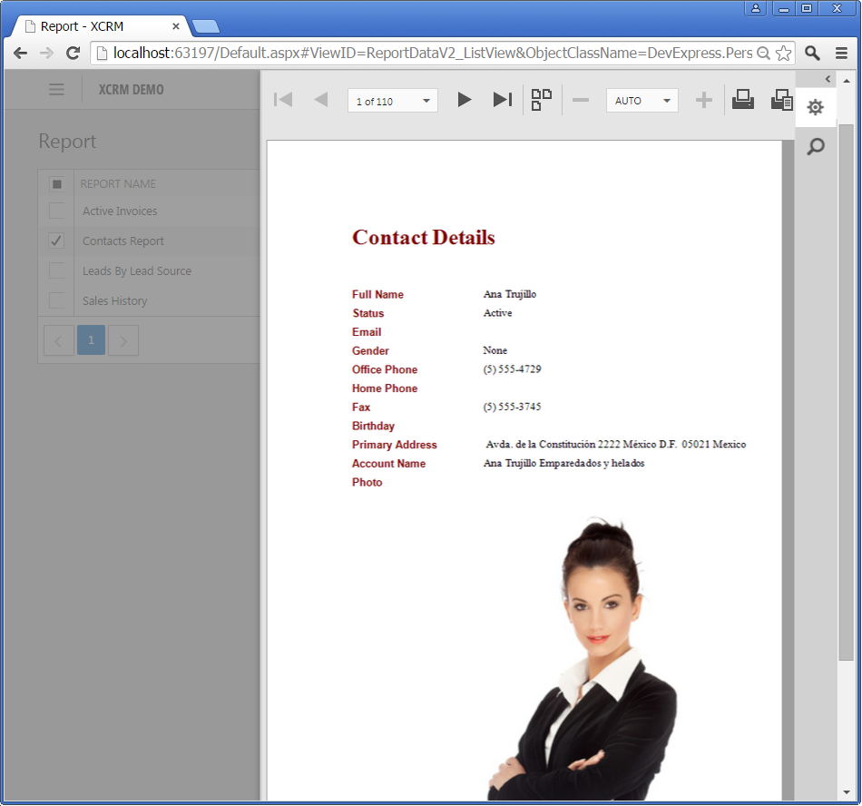 XAF: A preview of the HTML5/JS Report Document Viewer integration in